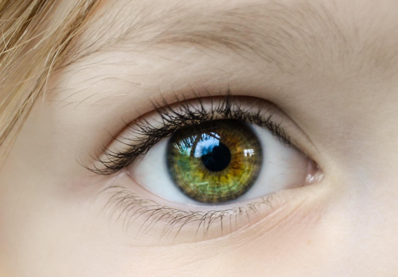 Close up eye ball
