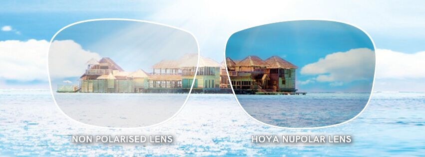 HOYA Polarised Lenses